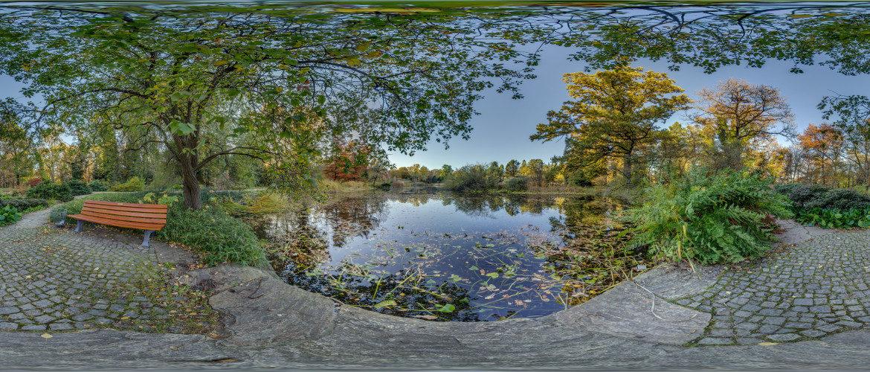 Element Wasser im Botanischen Garten